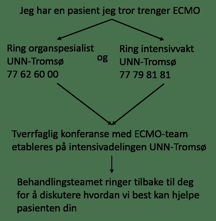 Kommunikasjonsvei ECMO ekstern